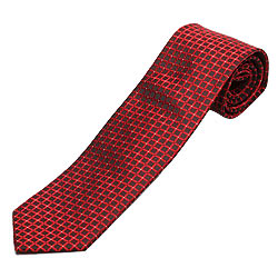 Stylish NeckTie from Zodiac