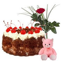 Gorgeous Gift of 1/2 Kg. Cake, Teddy and Red Rose