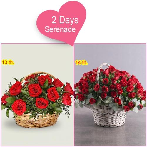 2 day Serenade Gifts for Your Women