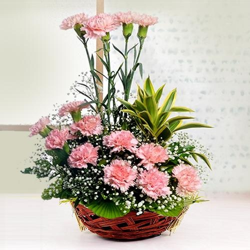 Amazing Basket of 12 Pink Carnations