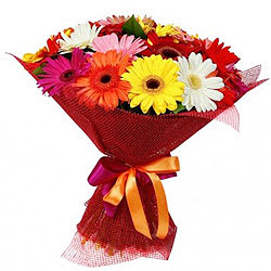 Ornamental Bouquet of Mixed Gerberas