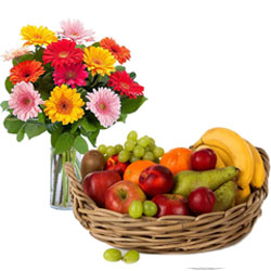 Aromatic Gerberas in a vase with Wholesome Fruits Basket