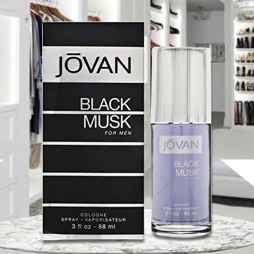 Pleasureful Jovan Black Musk Cologne for Men