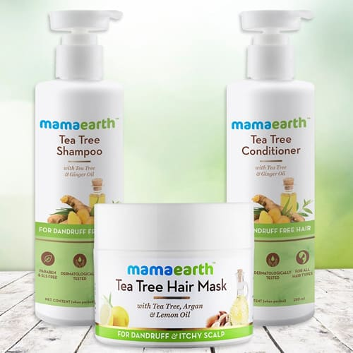 Exquisite Mamaearth Tea Tree Anti Hair Freez Spa Kit