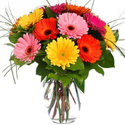 Vibrant Mixed Gerberas in Glass Vase