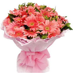 Exotic Bunch of Pink Gerberas