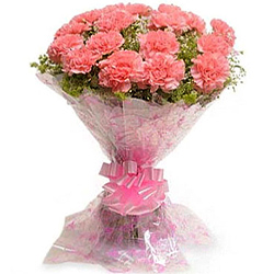 Glorious Bouquet of Pink Carnations