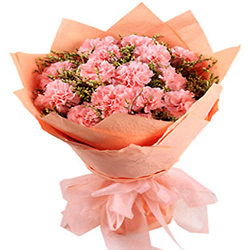 Wonderful Bouquet of Pink Carnations