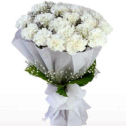 Captivating Bouquet of White Carnations