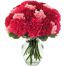 Vibrant Red N Pink Carnations in Glass Vase