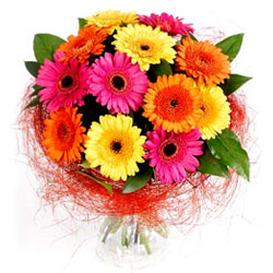 Lovely Bouquet of Multicolored Gerberas