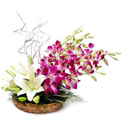 Wonderful Basket of Orchids N Lilies