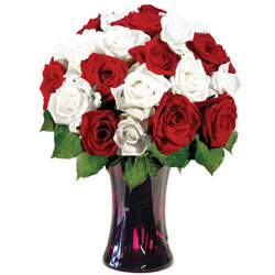 Awesome Red N White Roses in a Glass Vase