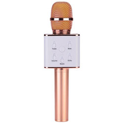 Essential Portable N Wireless Karaoke Microphone