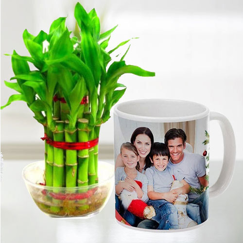 Special Personalized Coffee Mug with Two Tier Bamboo Plant