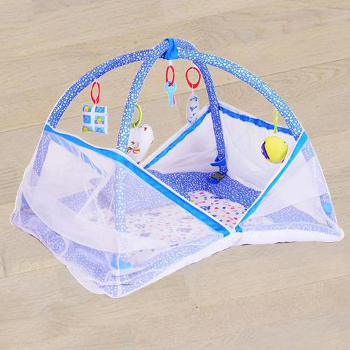 Exclusive Kick and Play Gym with Mosquito Net N Bedding Set