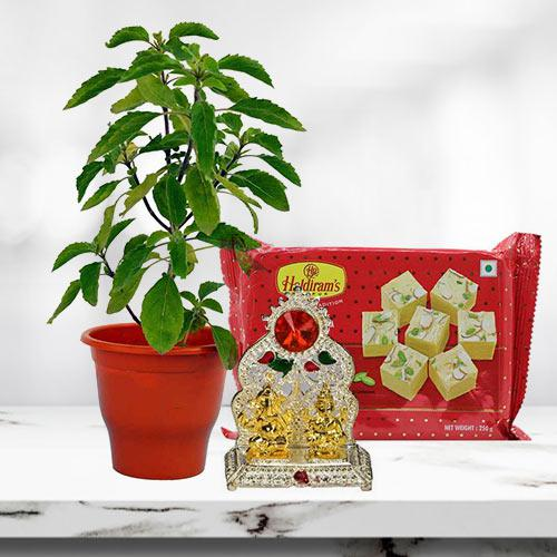 Spiritual Gift of Holy Tulsi Plant with Sweets N Mandap